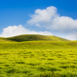 Rolling-Mountain-Meadow